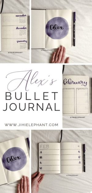 For Alex's the main color is dark purple and layouts include a title page, year at a glance, monthly layout, weekly layout...