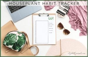 Do you love houseplants and want to keep track of their care? In this habit tracker you can track watering, fertilizing, repotting, and cleaning!