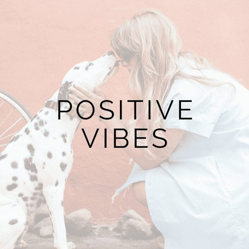 positive vibes tailwind tribe icon