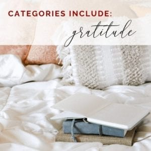 freebie gratitude categories icon