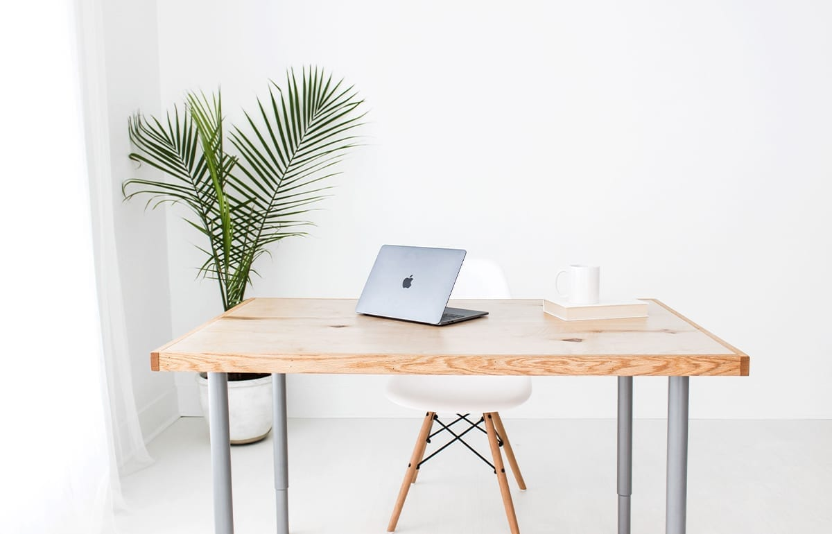 wood desk with lap top-white chair-and palm nearby