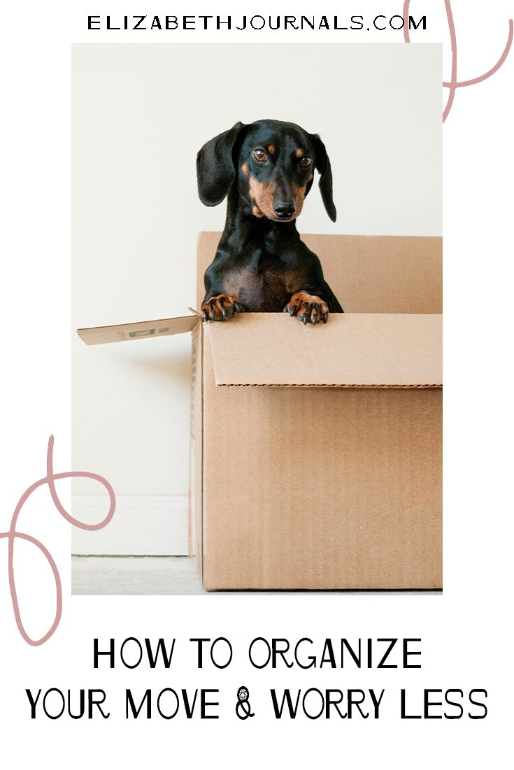 pinterest image-five ideas to organize your move and worry less-dog sitting in moving box